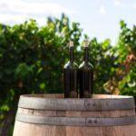 Spanish wine trails
